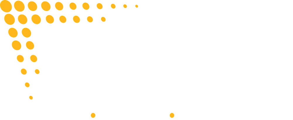 BSC Signs 2021 Official logo